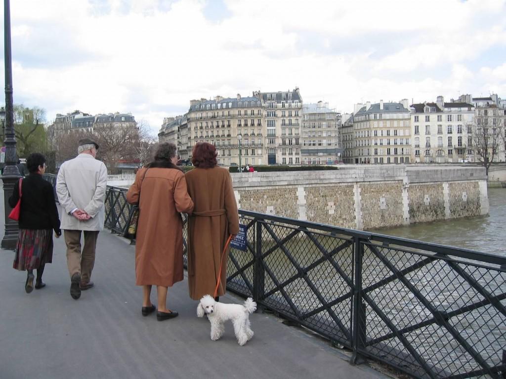 Paris Sisters Poodle