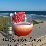 Watermelon Lemon Slushie with Voli Vodka