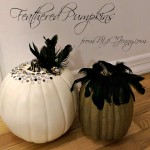Feathered Pumpkins For a Halloween Wedding