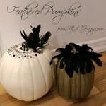 Feathered Pumpkins For a Halloween Wedding